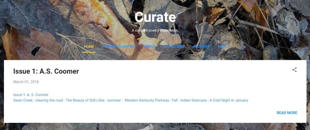 Curate, Issue 1, screenshot